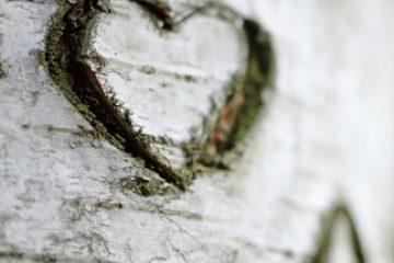 מאחורי כל פחד, חרדה או דיכאון מסתתרת אהבה